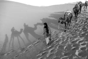 Licht und Schatten in der Wüste Marokkos