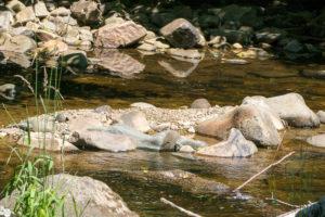 Natur Ilztal Fluss
